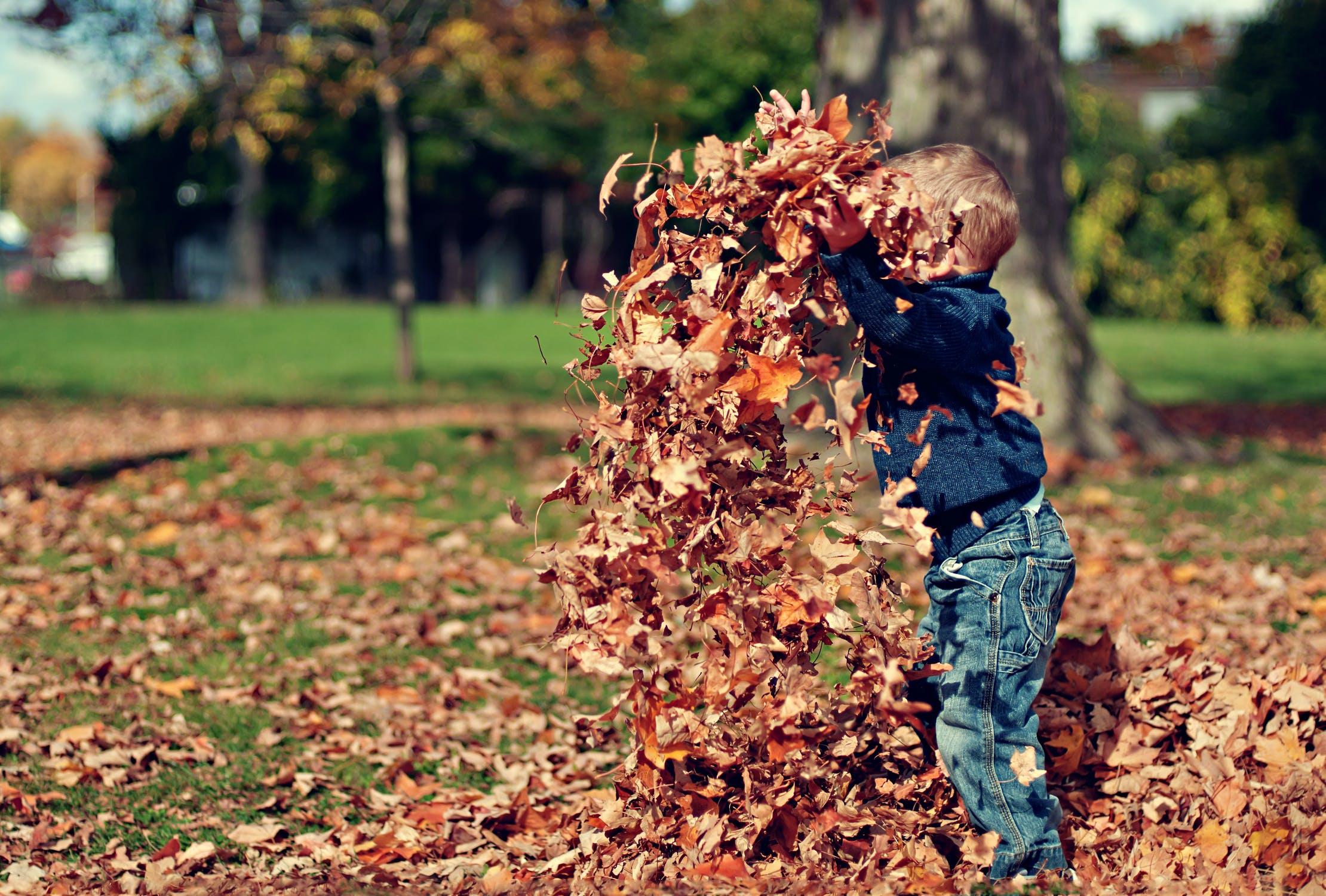 Kind in de Bladeren